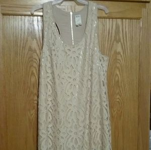 EUC- Beautiful Ali Ro Lace Dress-Sz 10